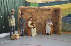 Więcej o: Słowno-muzyczne Jasełka w Wierzbicy