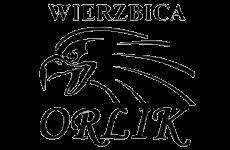 Orlik Wierzbica na stronę