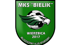 Więcej o: Sukcesy młodych piłkarzy Bielika Wierzbica